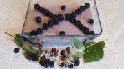 Легкое, воздушное и нежное суфле можно приготовить из любых ягод. Хочу поделиться рецептом суфле из ежевики, моей любимой ягоды.